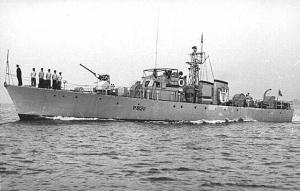 Nautilus - Old