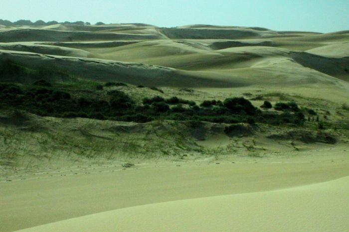 Alexandria Dune Field - Maka (1)