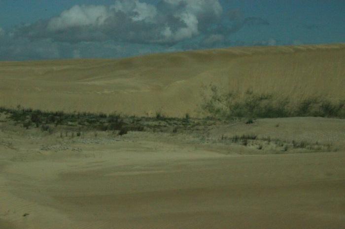 Alexandria Dune Field - Maka (6)