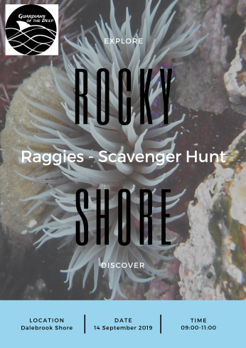 Raggies - Rocky Shore