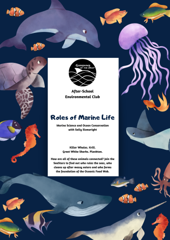SeaStars - Term 3 - Roles of Marine Life