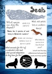 Lockdown Learning - Seal Quiz