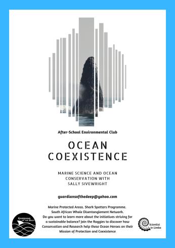 Raggies - AISCT - Term 2 - Ocean Coexistence