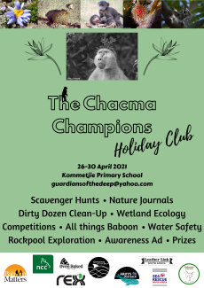 The Chacma Champions - Holiday Club Poster